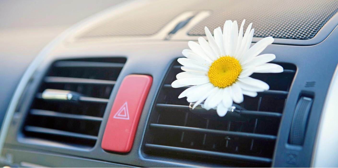 очиститель кондиционера автомобиля